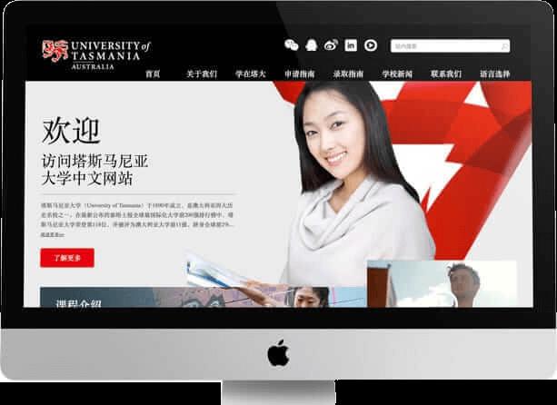 国际化中文网站