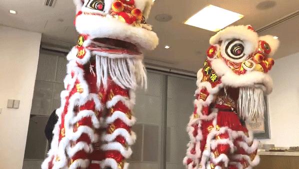 美驰中国年舞狮