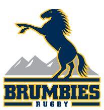 ACT Brumbies - 超级XV橄榄球队