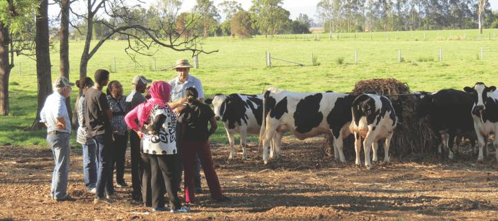 环境与农业科学
